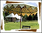 umbrellas, patio umbrellas, outdoor patio umbrellas, outdoor umbrellas, umbrellas manufacturer, beach umbrellas